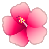 Hibiscus on Google Android 8.1