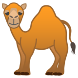 Camel on Google Android 9.0