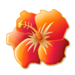Hibiscus on Samsung Experience 8.1