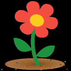 Blossom on Skype Emoticons 1.2