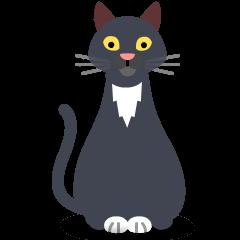 Cat on Skype Emoticons 1.2