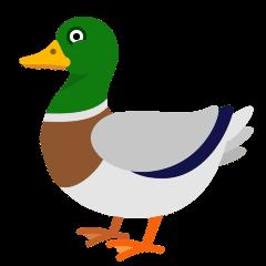 Duck on Skype Emoticons 1.2
