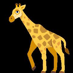 Giraffe on Skype Emoticons 1.2