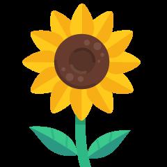 Sunflower on Skype Emoticons 1.2